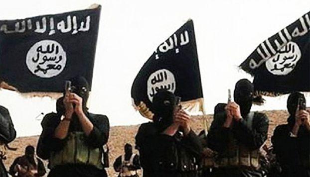 صراع مصر ضد الإرهاب في سيناء: تحالف مع العشائر، وتعاون مع إسرائيل؟