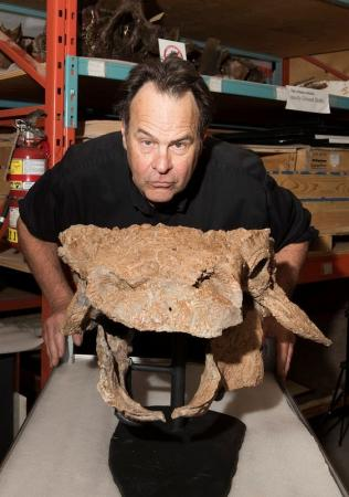 علماء يعثرون على ديناصور من العصر الطباشيري