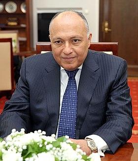 مصر لا تضع شروطاً لعودة سوريا إلى الجامعة العربية