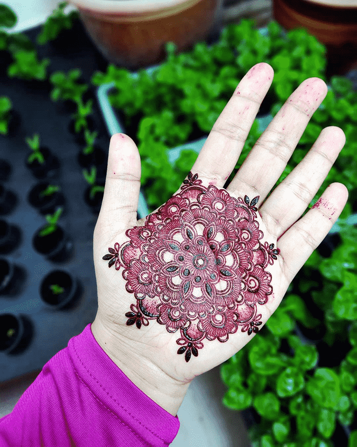 Classy Bollywood Henna design