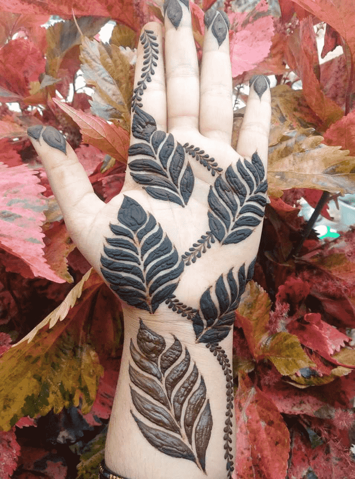Beauteous Jaipur Henna Design