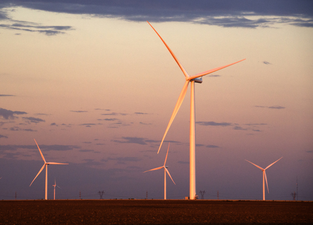 Campo eolico, Tarfaya -credit-Siemens