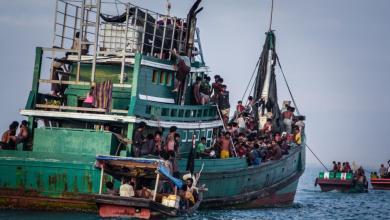 Photo of نصف مليون مسلم من الروهينغا لجأوا إلى بنغلادش خلال شهر