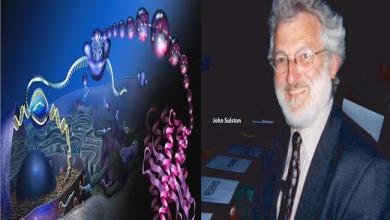 Photo of وفاة العالم سولستون الذي فك لغز الجينات البشرية