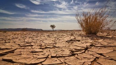 Photo of تقرير دولي يحذر من انعكاس ندرة المياه على الاستقرار بالعالم العربي