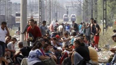 Photo of سبتمبر يسجل رقمًا قياسيًا في معدلات الهجرة غير الشرعية للعائلات
