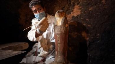 Photo of الكشف عن 7 مقابر أثرية فرعونية في مصر بالقرب من الأهرامات