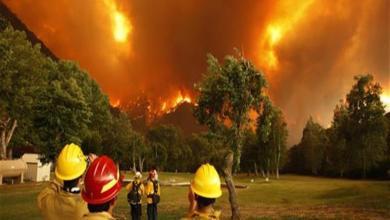 Photo of ارتفاع حصيلة ضحايا الحريق الضخم فى شمال كاليفورنيا إلى 23 قتيلا