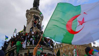 Photo of الحراك الجزائري يتخذ المنجل شعارًا لتطهير البلاد من بقايا نظام بوتفليقة