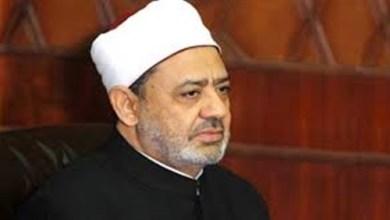 Photo of شيخ الأزهر: نبذل جهودًا كبيرة لترسيخ قيم التسامح والسلام العالمي
