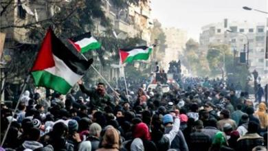 Photo of الإحصاء: أكثر من 100 ألف شهيد فلسطيني منذ نكبة 1948