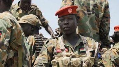 Photo of إثيوبيا تعلن اعتقال منفذى الهجوم على رئيس الأركان