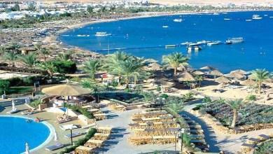 Photo of مصر: السوق العربي يمثل نحو 30% من حجم الحركة الوافدة