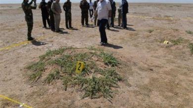 Photo of العثور على مقبرة جماعية للرضع في كوت ديفوار