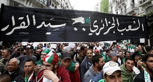 Photo of الحكومة الجزائرية تحاول تشغيل الشركات المتهمة بالفساد تفاديًا للمخاطر