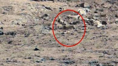 "Photo of ناسا تعثر على صور لـ""تابوت فرعوني"" على الكوكب الأحمر"
