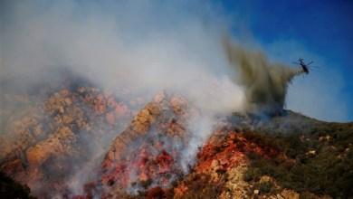 Photo of روسيا : الجيش يخمد حرائق غابات في سيبيريا
