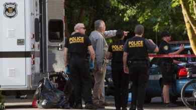 Photo of قتيلان و8 جرحى في إطلاق نار بولاية ساوث كارولاينا