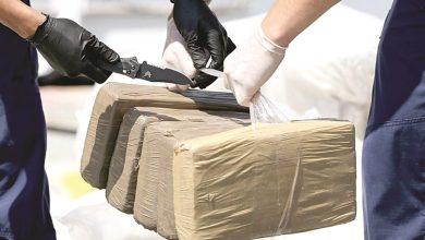 Photo of ضبط عجوز كولومبية أثناء تهريبها كمية كبيرة من الكوكايين للخارج