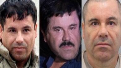 Photo of أمريكا تخصص 5 ملايين دولار لتوقيف تاجر مخدرات مكسيكي