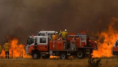 Photo of فيديو وتفاصيل جديدة لتحطم طائرة نتيجة حرائق غابات أستراليا