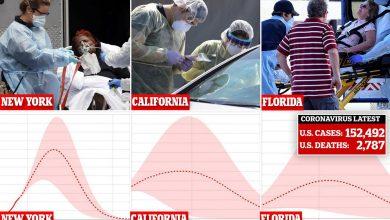 Photo of رسم بياني يوضح متى ستصل كل ولاية إلى ذروة فيروس كورونا