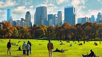 Photo of عشرات الغرامات لسكان نيويورك لمخالفتهم قواعد التباعد الاجتماعي