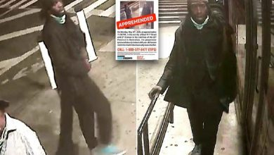 Photo of إلقاء القبض على مغتصب مسنّة نيويورك ذات الـ64 عامًا