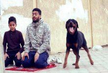 Photo of تعرف على حقيقة الفيديو المتداول لإسرائيلي أطلق كلبه على مُصلّي فلسطيني