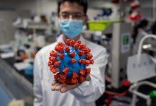 Photo of فيروسان خطيران يضربان الصين وإيطاليا ومخاوف من تحولهما لجائحة