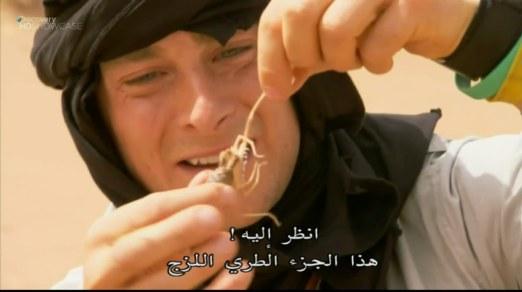 الصمود المطلق : الصحراء الكبرى HD