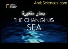 بحر محيط واحد : بحار متغيرة