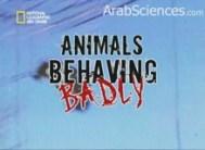 حيوانات تتصرف بشكل سيئ