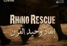صورة أجمل أفلام جوبيرت : إنقاذ وحيد القرن
