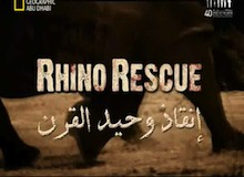 أجمل أفلام جوبيرت : إنقاذ وحيد القرن