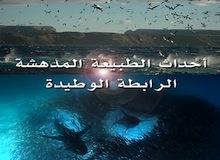 أحداث الطبيعة المدهشة ح4