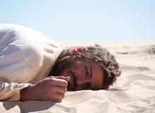 برنامج معجزة : معجزة في الصحراء