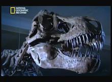 إعادة ترميم التيرانوصور