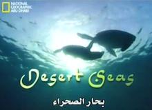 بحار الصحراء