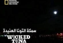 صورة سمكة التونة العنيدة : محاربو نهاية الأسبوع
