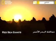 شين المغامر : عمالقة البحر الأحمر