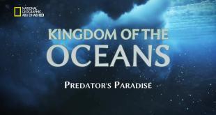 مملكة البحار HD : جنة المفترسين