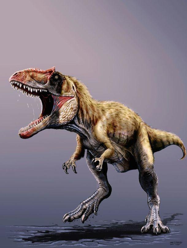 اكتشاف الديناصور المتوحش الأكبر في التاريخ - موقع علوم العرب
