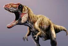 صورة اكتشاف الديناصور المتوحش الأكبر في التاريخ