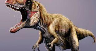 اكتشاف الديناصور المتوحش الأكبر في التاريخ