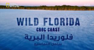 فلوريدا البرية HD : ساحل التماسيح