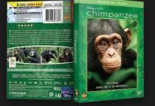 صورة وثائقي الشمبانزي