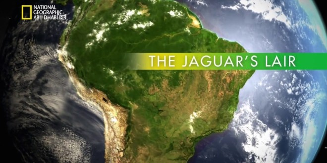 وجهات برية HD : البرازيل البرية – مخبأ جاكوار