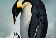 صورة مترجم : مسيرة البطريق