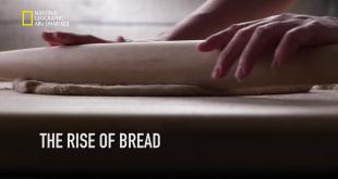 قصة الغذاء HD : الافراط في الاكل